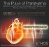 The Pulse of Prāṇāyāma